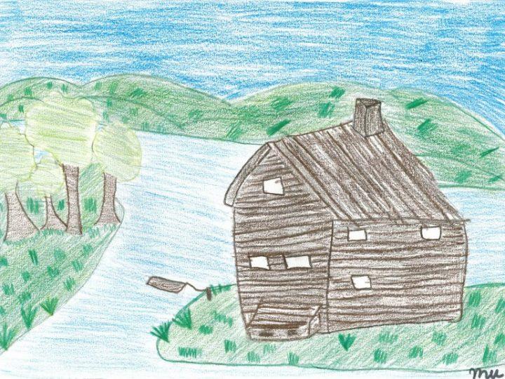 Desenho de observação – 5º ano