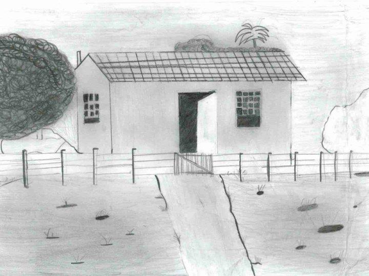 Desenho de observação em lápis 6B – 5º ano