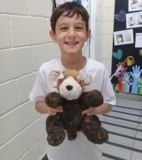 My favorite animal – 3º ano C tarde