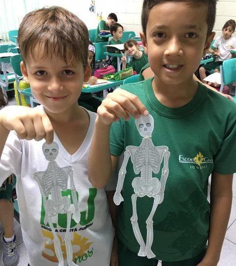 Esqueleto – 3º ano